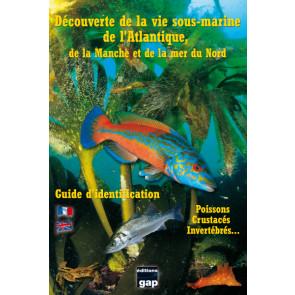 Decouverte de la vie sous-marine de l'Atlantique